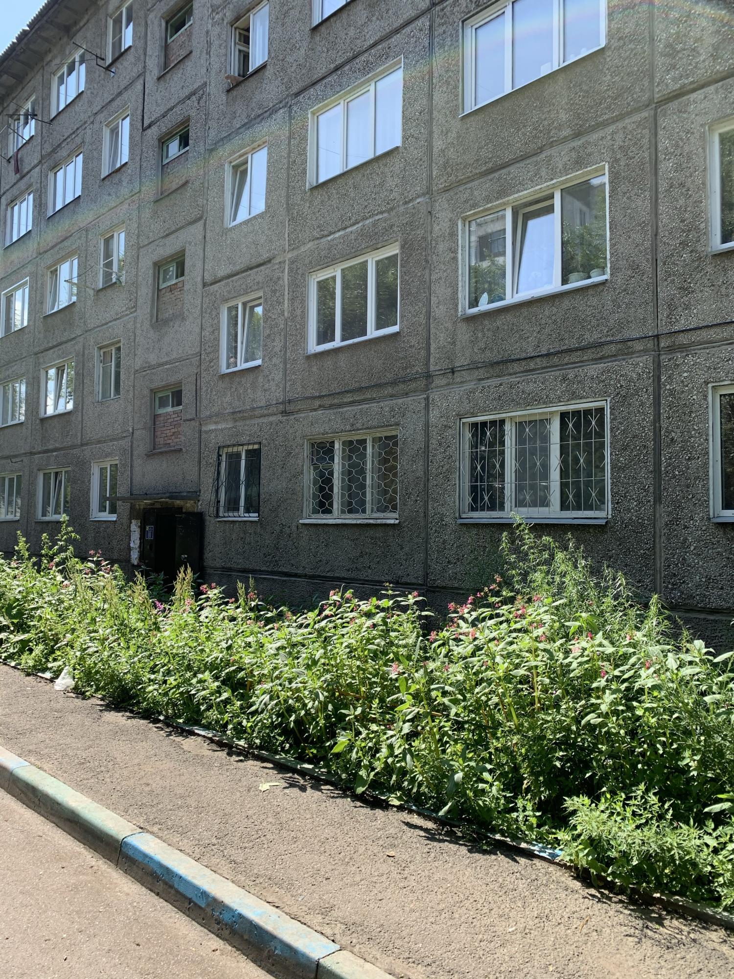 1к квартира улица Устиновича, 24Г | 11000 | аренда в Красноярске фото 3