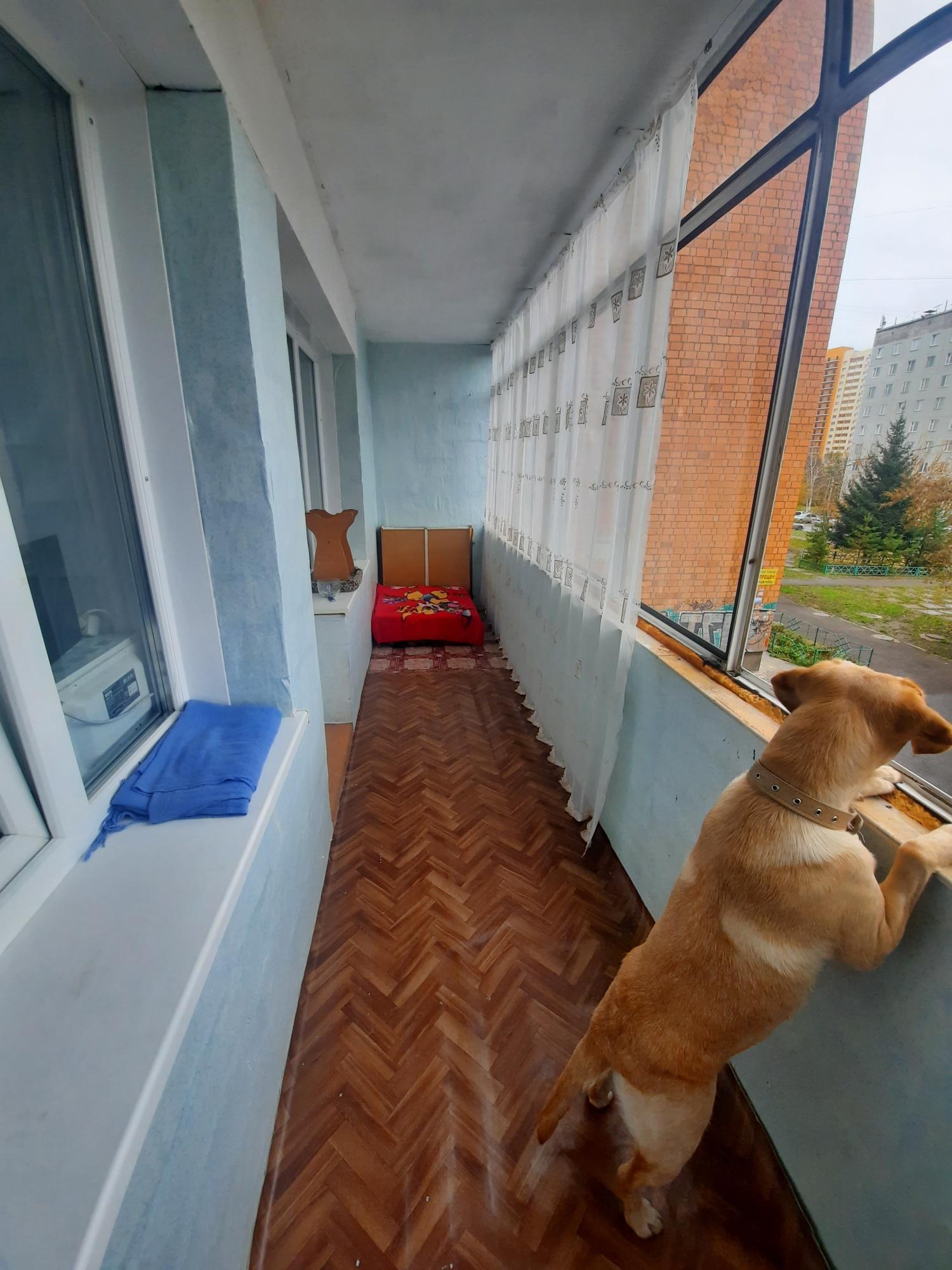 1к квартира улица Светлогорская, 15 | 15000 | аренда в Красноярске фото 7
